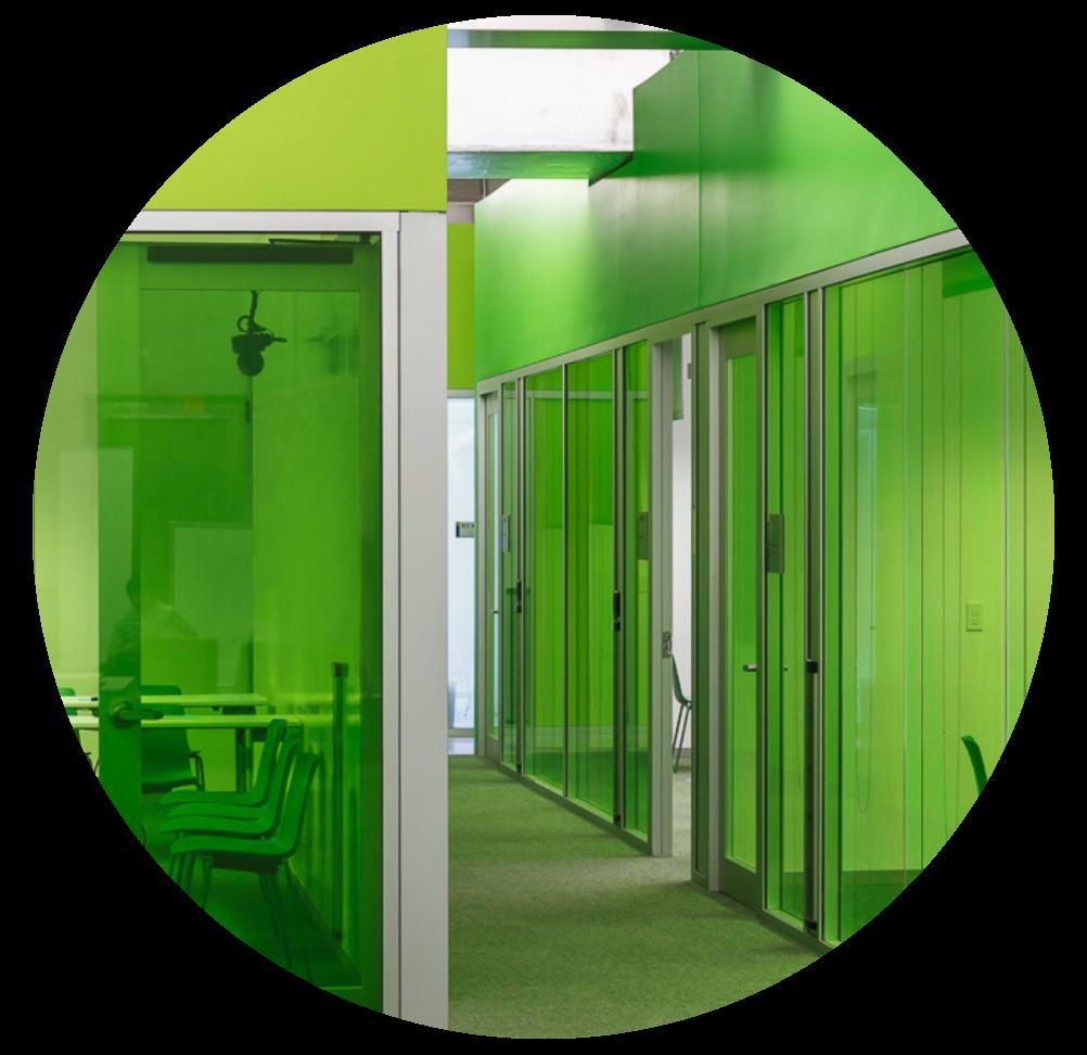 Moodwall lookbook green walls